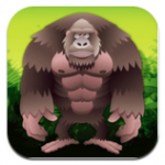 gorilla-workout-2